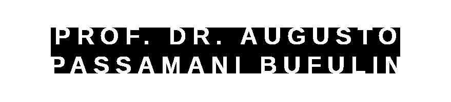 Prof. Dr. Augusto Passamani Bufulin